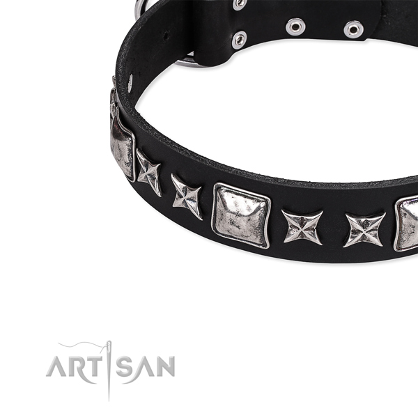Full grain natural leather dog collar with extraordinary embellishments