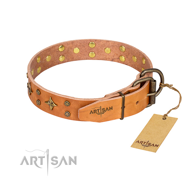 Everyday walking leather collar with adornments for your canine