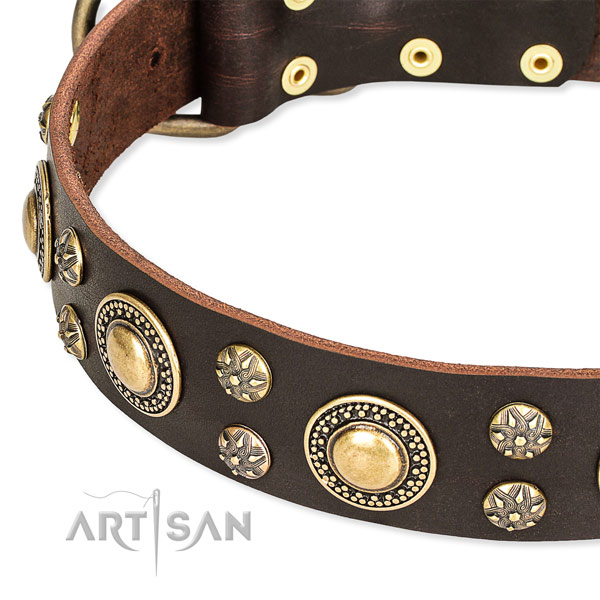 Walking leather collar with rust-proof buckle and D-ring