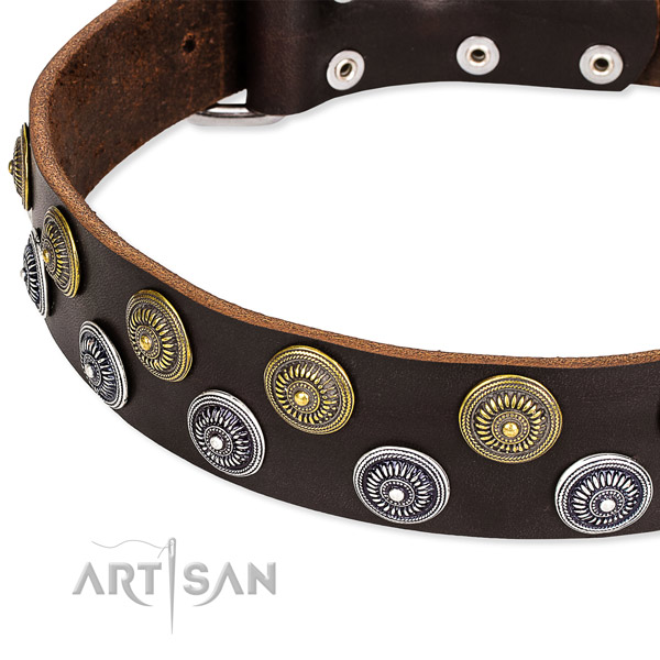 Genuine leather dog collar with top notch embellishments