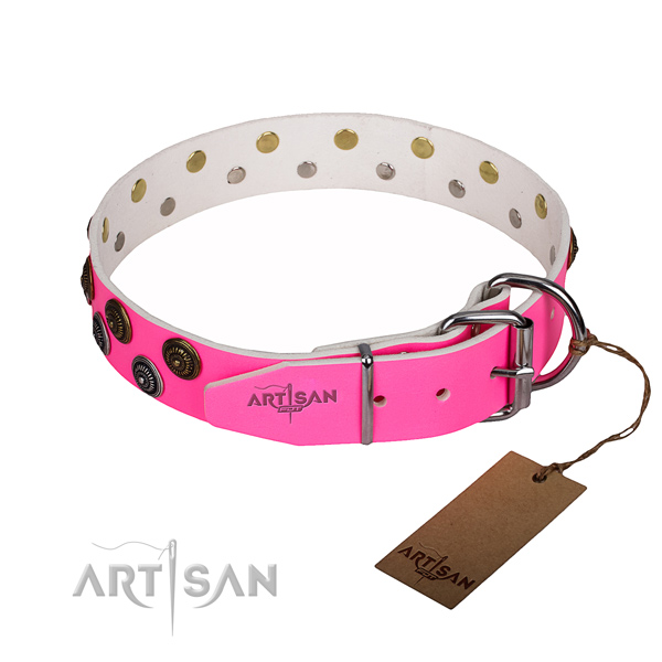Daily use natural genuine leather collar with studs for your dog