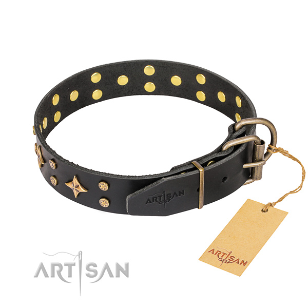 Daily use genuine leather collar with adornments for your doggie