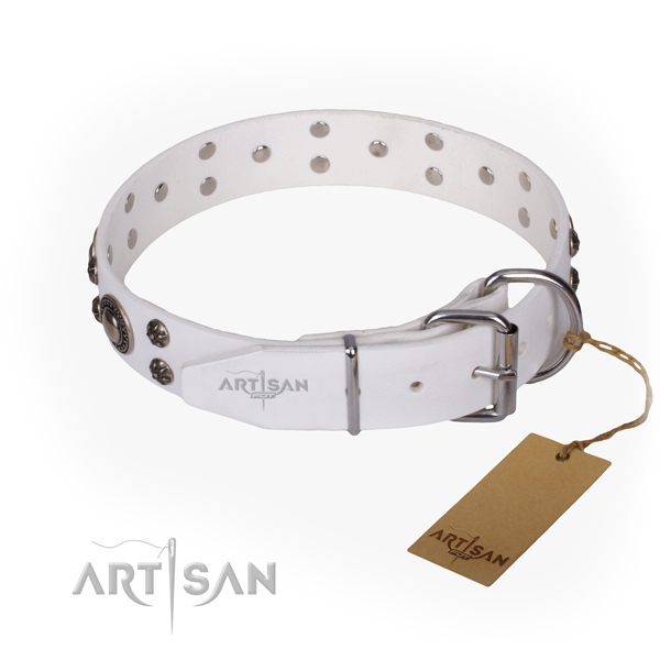 Stylish walking full grain natural leather collar with adornments for your dog