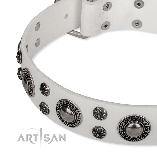 Stylish walking leather collar with corrosion proof buckle and D-ring