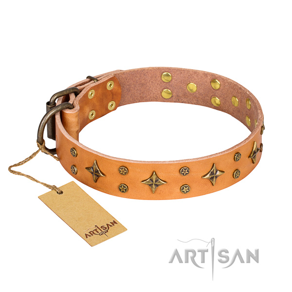 Inimitable full grain genuine leather dog collar for stylish walking