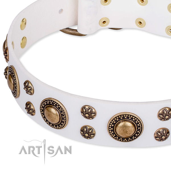Leather dog collar with extraordinary adornments