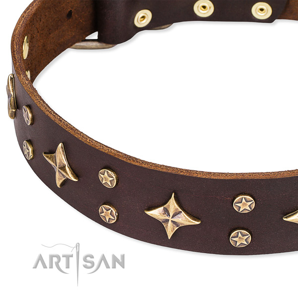 Full grain genuine leather dog collar with impressive embellishments