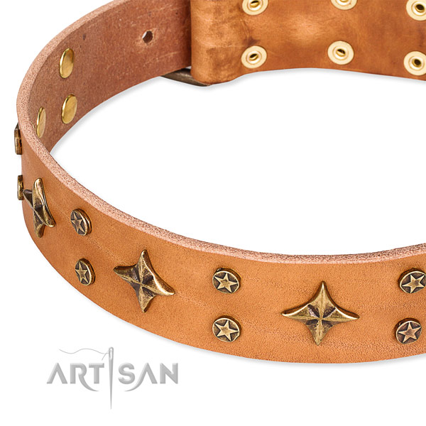 Full grain genuine leather dog collar with amazing adornments