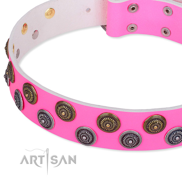 Full grain leather dog collar with incredible studs
