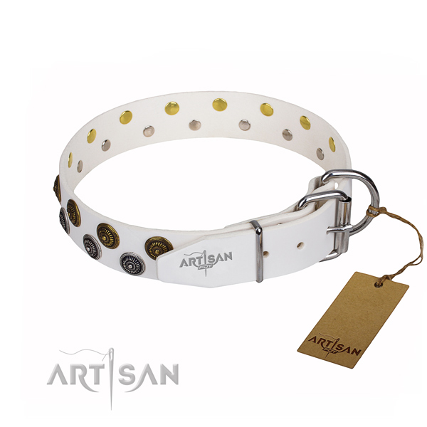 Daily use natural genuine leather collar with embellishments for your canine