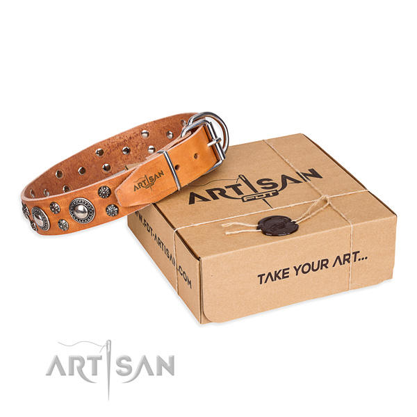 Trendy full grain leather dog collar for daily use