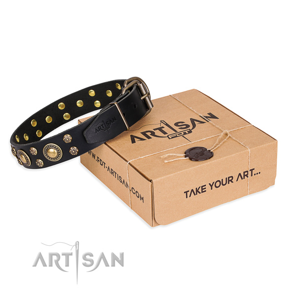 Finest quality full grain natural leather dog collar for walking