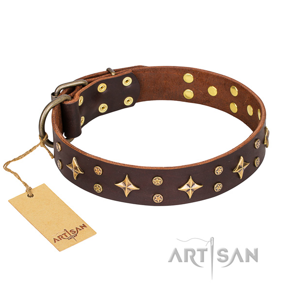 Significant leather dog collar for daily walking