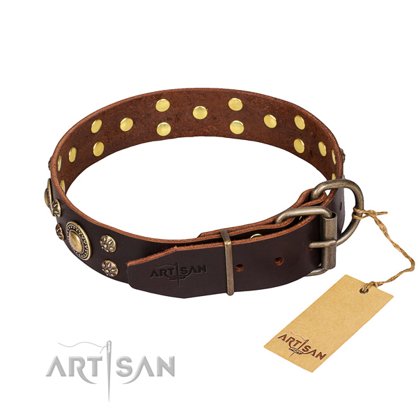 Daily walking full grain leather collar with decorations for your four-legged friend
