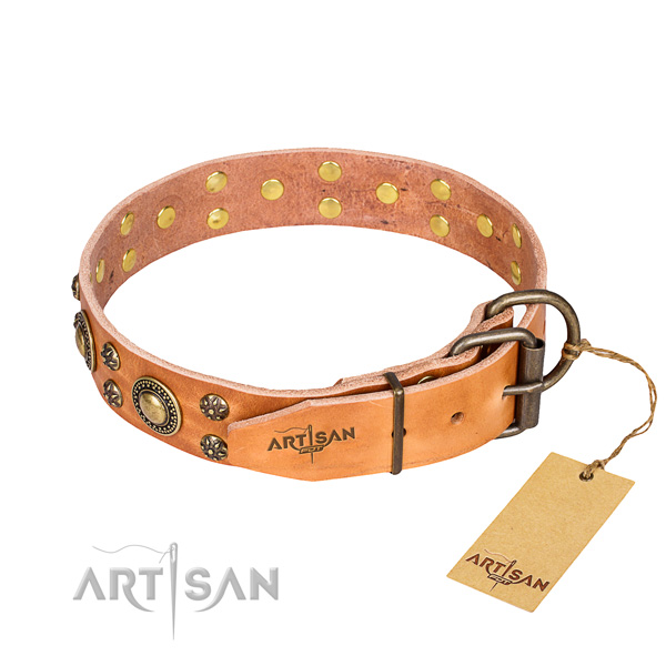 Walking full grain genuine leather collar with adornments for your four-legged friend