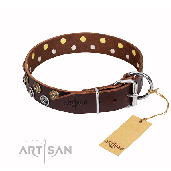 Everyday use full grain leather collar with adornments for your pet