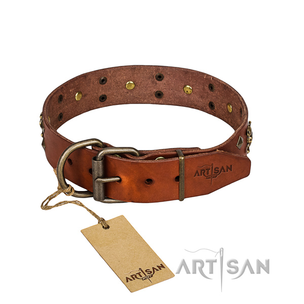 Leather dog collar with worked out edges for Cane Corso pleasant everyday outing