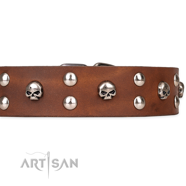 Genuine leather dog collar with polished leather surface