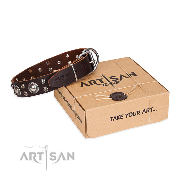 Casual style leather dog collar with fancy adornments
