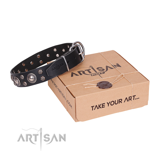 Casual leather dog collar with luxurious embellishments