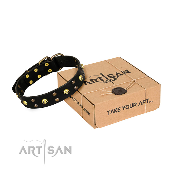 Casual style leather dog collar with amazing embellishments