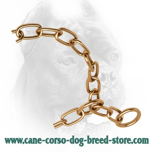 Strong Links on Curogan Cane Corso Fur Saver