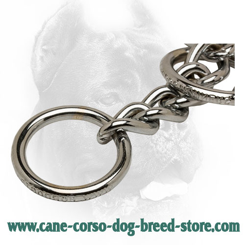 Strong O-Ring on Cane Corso Choke Collar