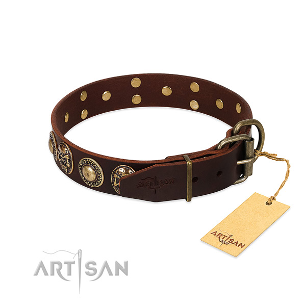 Stylish walking full grain genuine leather collar with embellishments for your canine