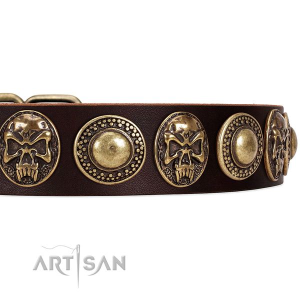 Full grain natural leather dog collar with adornments for easy wearing