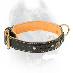 Simply beautiful Cane Corso collar made of leather
