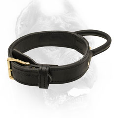 Wonderful training leather dog collar