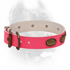 Pink leather dog collar for making females more beautiful