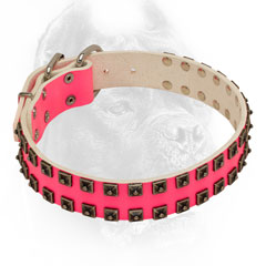 Leather pink dog collar with nickel pyramids