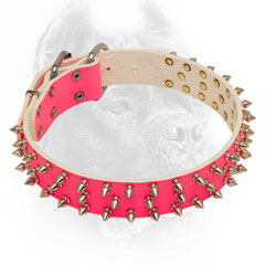 Decorated pink nickel spiked leather dog collar for lady-Corso