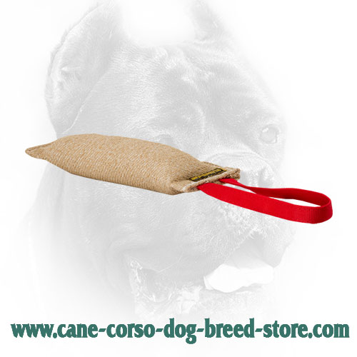 Jute Cane Corso Bite Tug for Puppy Training