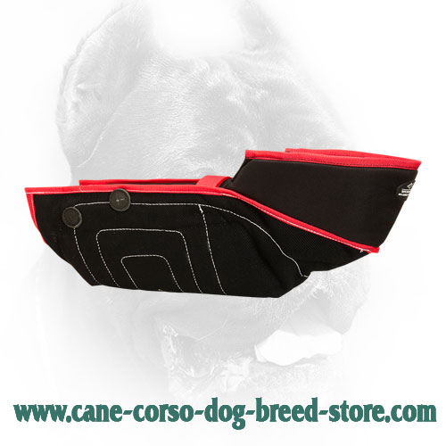 Extra Strong Cane Corso Protection Bite Sleeve - Safest Training Dog Equipment