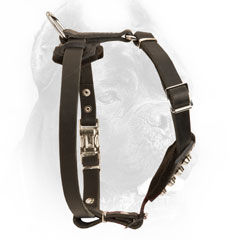 Leather Cane Corso Harness for Comfortable Wearing