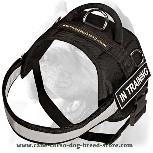 tactical dog harness with handle