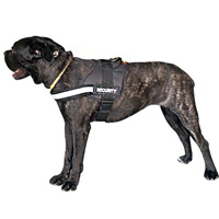 Nylon Dog Harness for maximum comfort