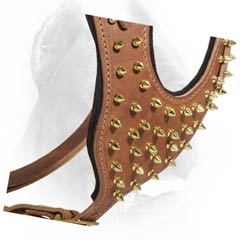 Unique leather dog harness with spikes