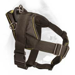 High quality nylon dog harness for Cane Corsos