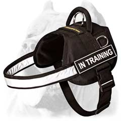 Reflective sport dog harness