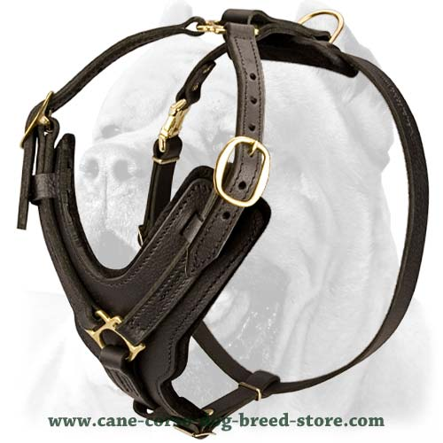 best harness for pulling