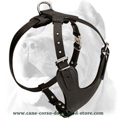Innovative well-made leather dog harness