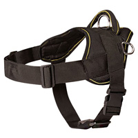 Nylon multi dog harness for tracking/pulling