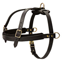 Made for pulling and tracking harness is built for strength,comfort and safety for Cane Corso