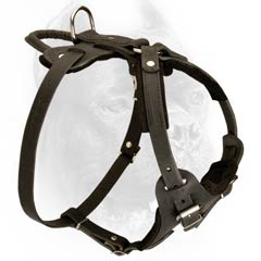 Easy adjustable felt padded leather harness