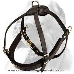 Safety walking leather dog harness