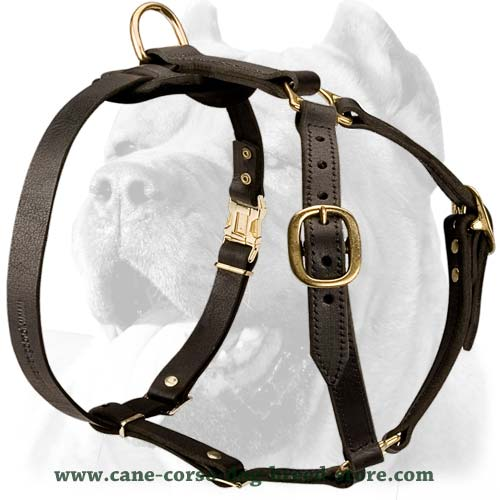 cane corso leather dog harness tracking walking 2 big luxury handcrafted leather dog harness for cane corso [h7 1030 leather dog harness at suagrazia.org