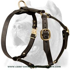 Fuly adjustable leather dog harness